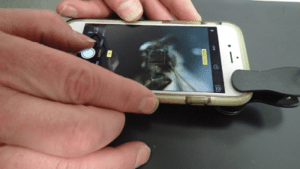 Person taking a photo of an insect on an iPhone.